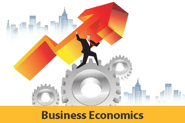 Business Economics (Study Material)