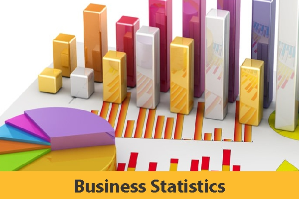 Business Statistics (Coming Soon)