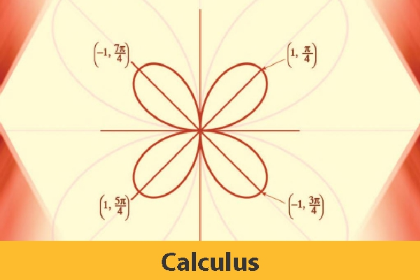 Calculus ( Only Study Material)