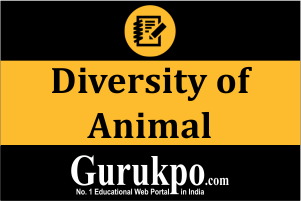 Diversity of Animal (Only Study Material)