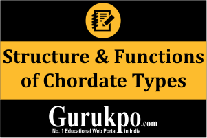 Structure & Functions of Chordate Types (Only Study Material)